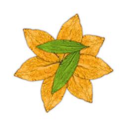 7-leaves tobaksaroma